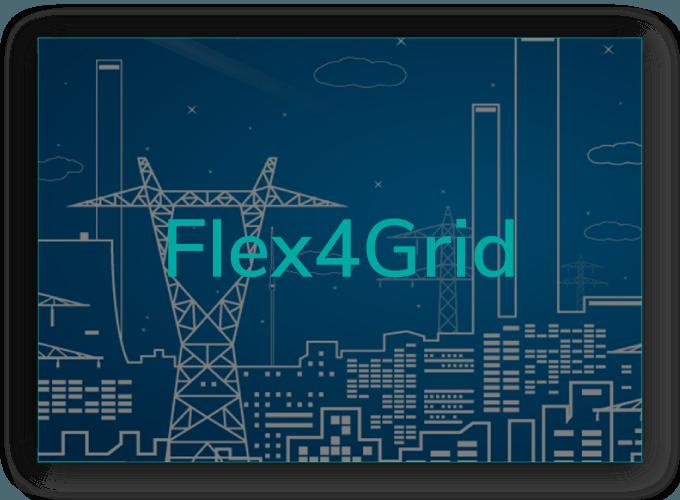 Flex4Grid